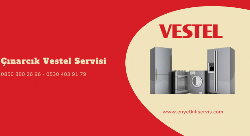 Çınarcık Vestel Servisi